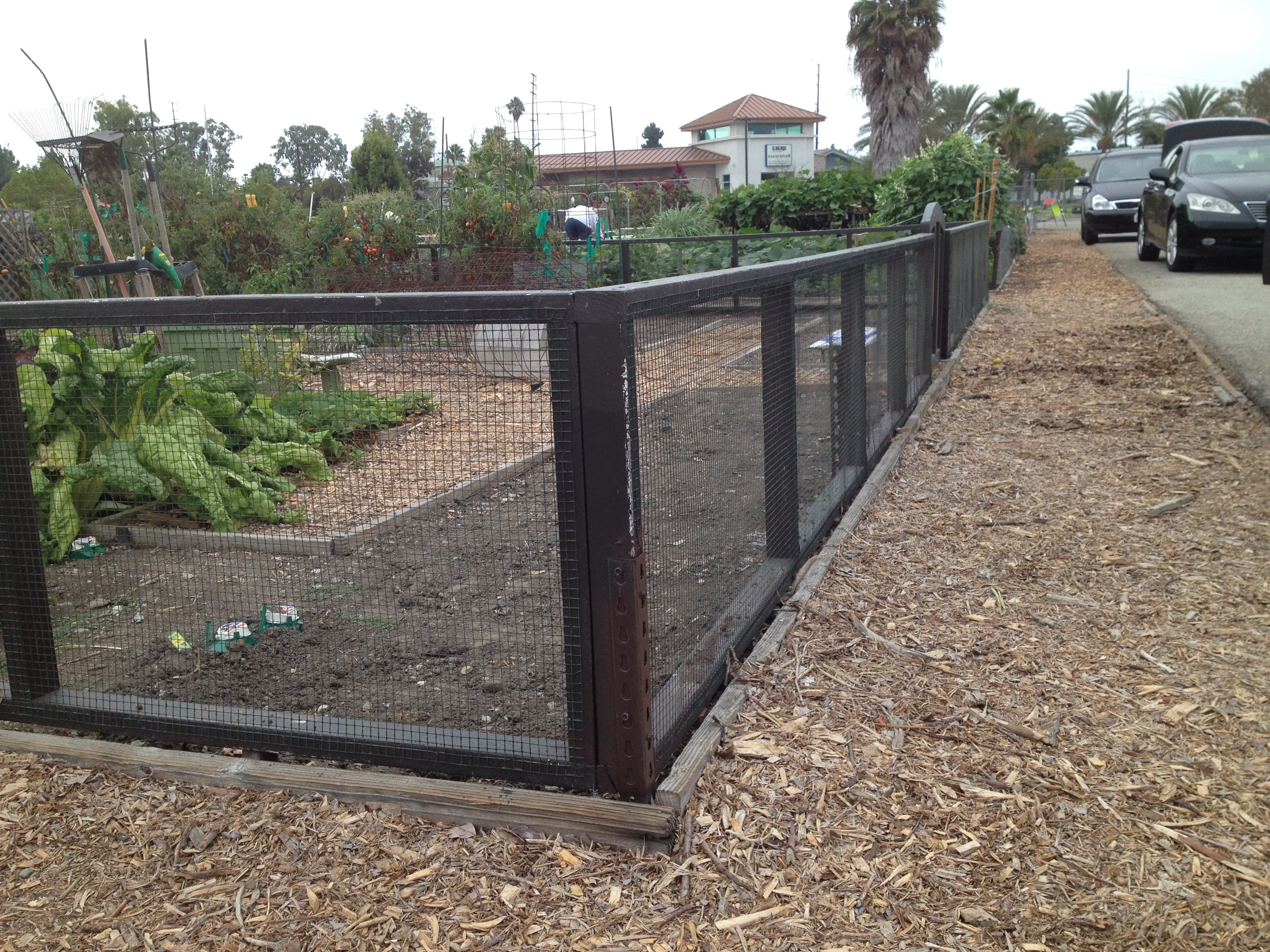 Long Beach Community Garden Association Inc Perimeter