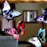calendar butterflies d