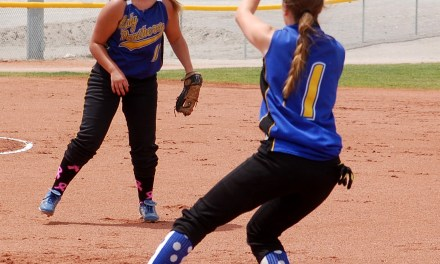 Lady Panthers run through zone; advance to state tournament