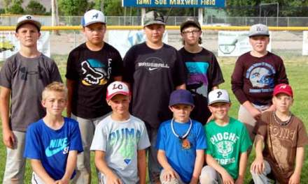Lincoln County fielding just one Little League All-Star team