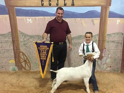 Lincoln County Kids Take Part in Clark County Fair