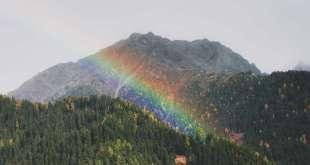 Discovering the Balance Between Discipleship & Allyship