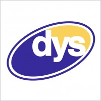 Dys : expertise 2007