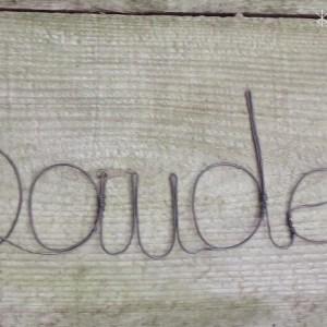 Baudelaire pour témoin