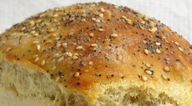 Primeros Pasos en Pan de Masa Madre