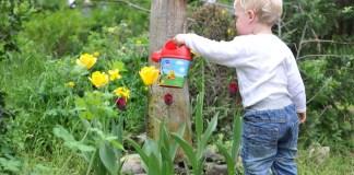 23-24-septembre-prochains-venez-rapporter-vos-pesticides-jardineries-botanic