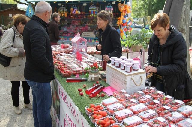 6eme-fete-de-la-fraise-au-lac-du-moulin-le-23-avril