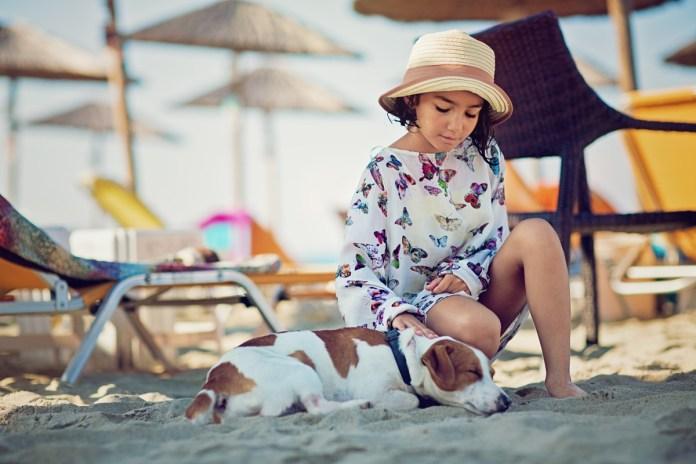 la-leishmaniose-canine-campagne-de-sensibilisation-grand-public
