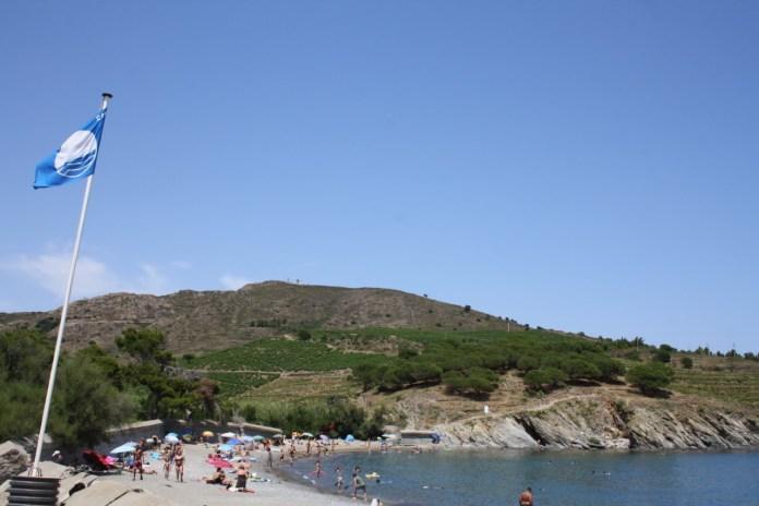 Le pavillon bleu bien ancré à Port-Vendres2