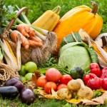 « Encourager les producteurs locaux et boycotter les supermarchés » : 65 % des français sont pour !