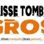 Les Amis D'Ta Femme : Chanson et paroles Laisse Tomber Gros!