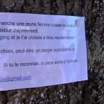 Vosges : déclaration d'amour bio !