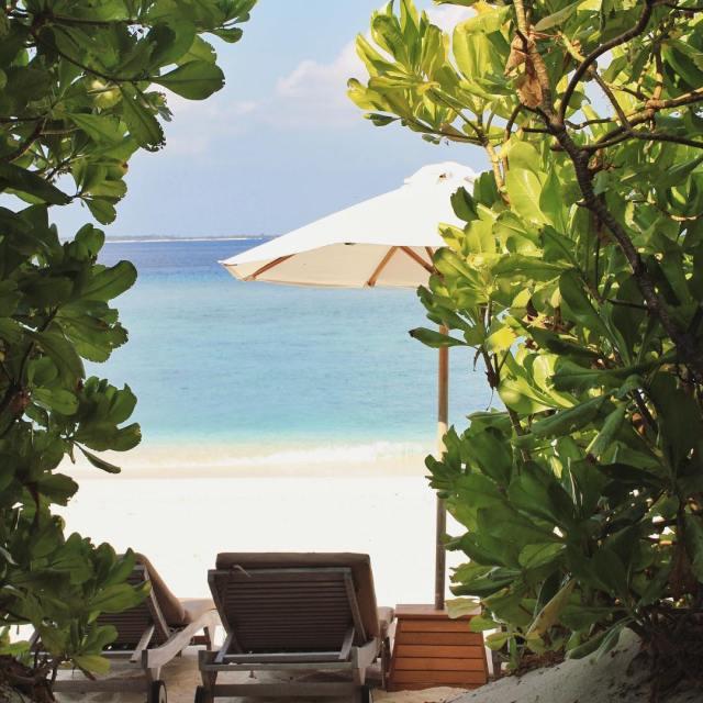 Avec ses plages de sables blanc ombrages par des cocotiershellip