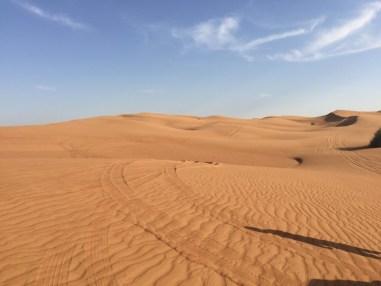 Le désert de Dubaï, un véritable lieu de quiétude