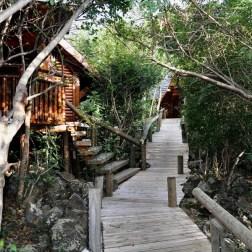 Les bungalows disséminés dans la végétation