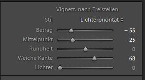 Vignette Lightroom