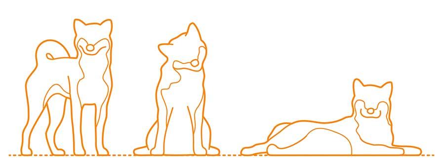 Formes Shiba Inu