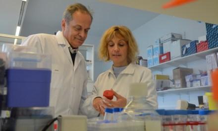 Cancer du sein : un nouveau traitement d'ici 2 ans ?