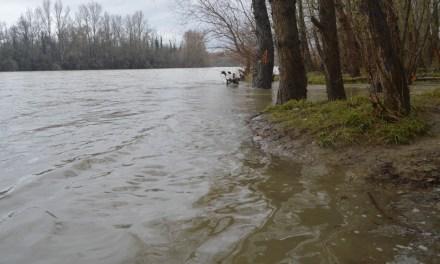 Toulouse surveille la Garonne, en risque de crue