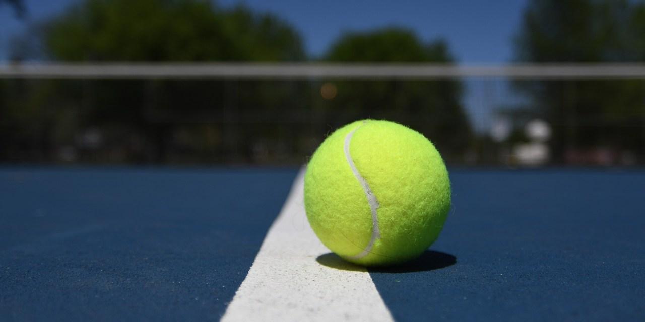 Open d'Australie : Tsonga au mental, Simon abandonne