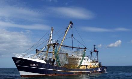 La pêche électrique au coeur du débat Européen
