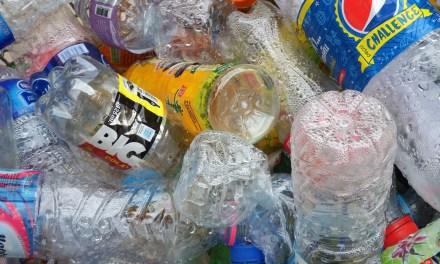 Vers le consignage généralisé des bouteilles en plastique en France ?