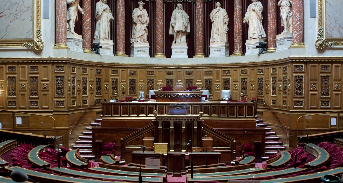 La PMA pour toutes a été adoptée par le Sénat