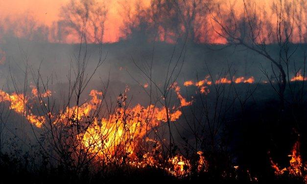 Incendies en Australie : 3 morts après le crash d'un bombardier