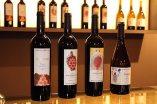 Bodega-Marco-Abella-wines-priorat