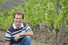 David-Marco-Vineyard-L&S-tasting