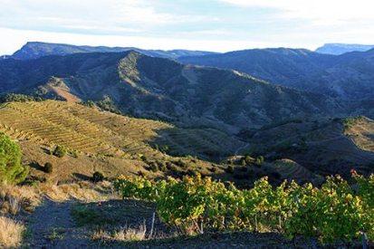 View from La Mallola