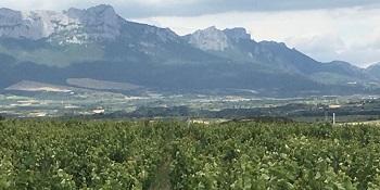 View of Artuke & Sierra de Tolono