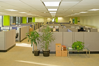 photo of office with cubicles