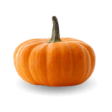 zucca_png