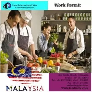 Work Permit is available in Malaysia Visa