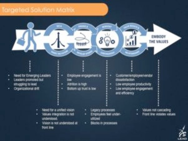 Targeted Solution Matrix