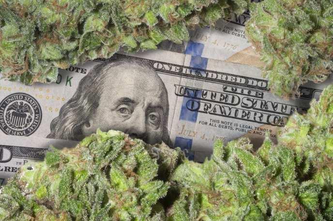 Image result for marijuana money