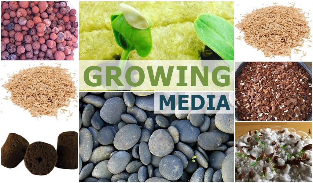 Growing Media - Leaffin