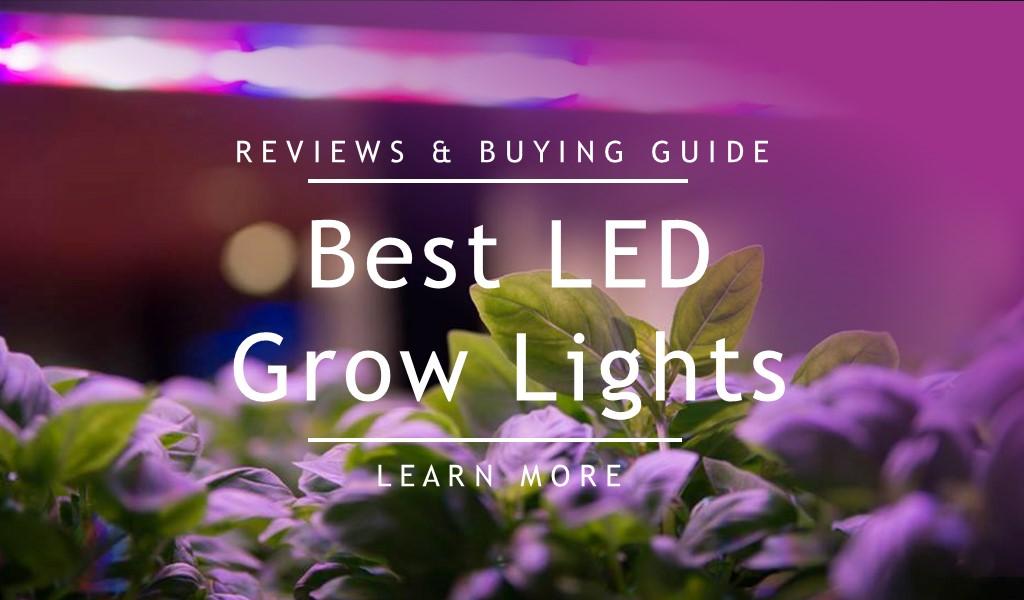 best led grow lights comparison for the money