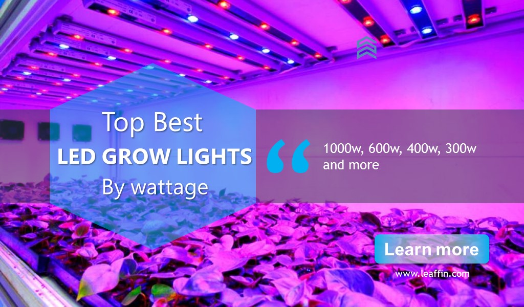 watt grow light 600 watt grow light 300 watt grow light 600 watt grow light