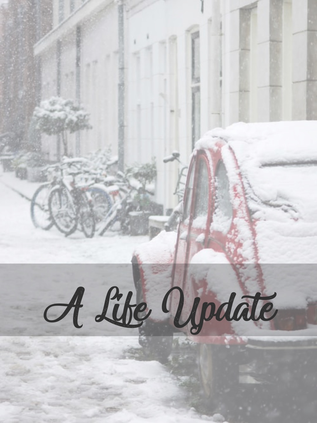 A Life Update: What the New Year Will Bring Me