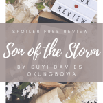 son of the storm review cover image