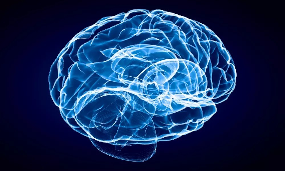 Reprogramming Brain Cells Offers Hope for Parkinson's | | LEAF