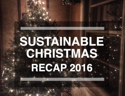 Sustainable Christmas Recap on Leafygreen.info