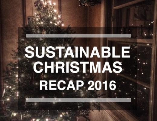 Sustainable Christmas Recap on Leafygreen.info