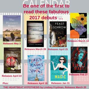 2017 Debuts Big Book Giveaway | leahdecesare.com