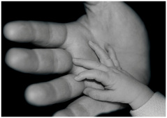 Photo: Baby's Hand on Daddy's Hand