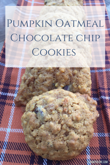 pumpkin-oatmealchocolate-chipcookies-1