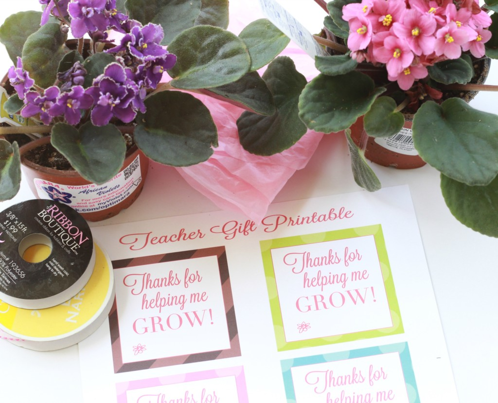 picture relating to Thanks for Helping Me Grow Free Printable named totally free Instructor Appreciation Printable - Leah With Appreciate