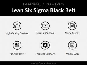 Six Sigma Yellow Belt (Online Course + Exam) : The Basics